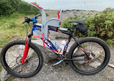 Various Trek Bikes